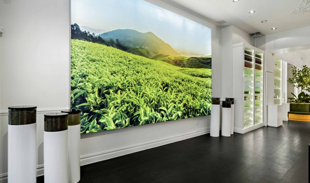 huge wall picture at Pure Leaf pop-up store - realised by Ganter