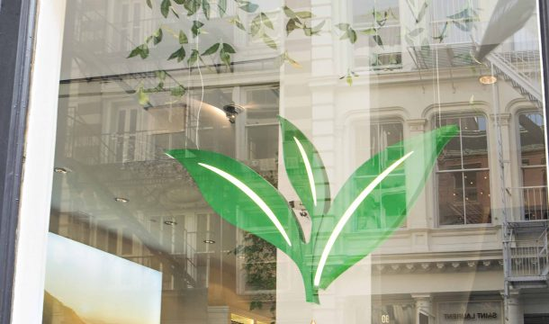 window decoration at Pure Leaf store - realised by Ganter